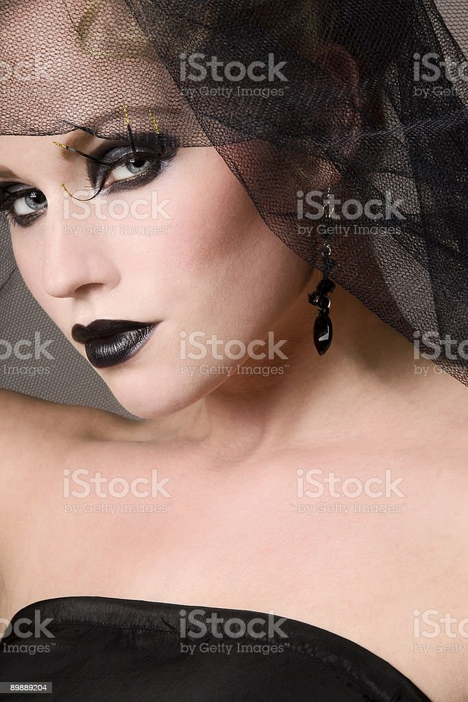 Black beauty royalty-free stock photo