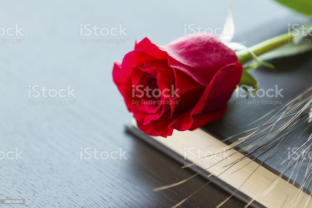 Black book with red rose stock photo