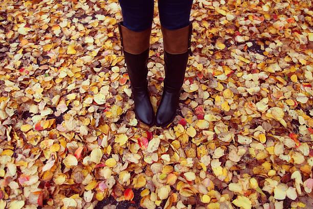 Bota preta e coloridas folhas de outono - foto de acervo