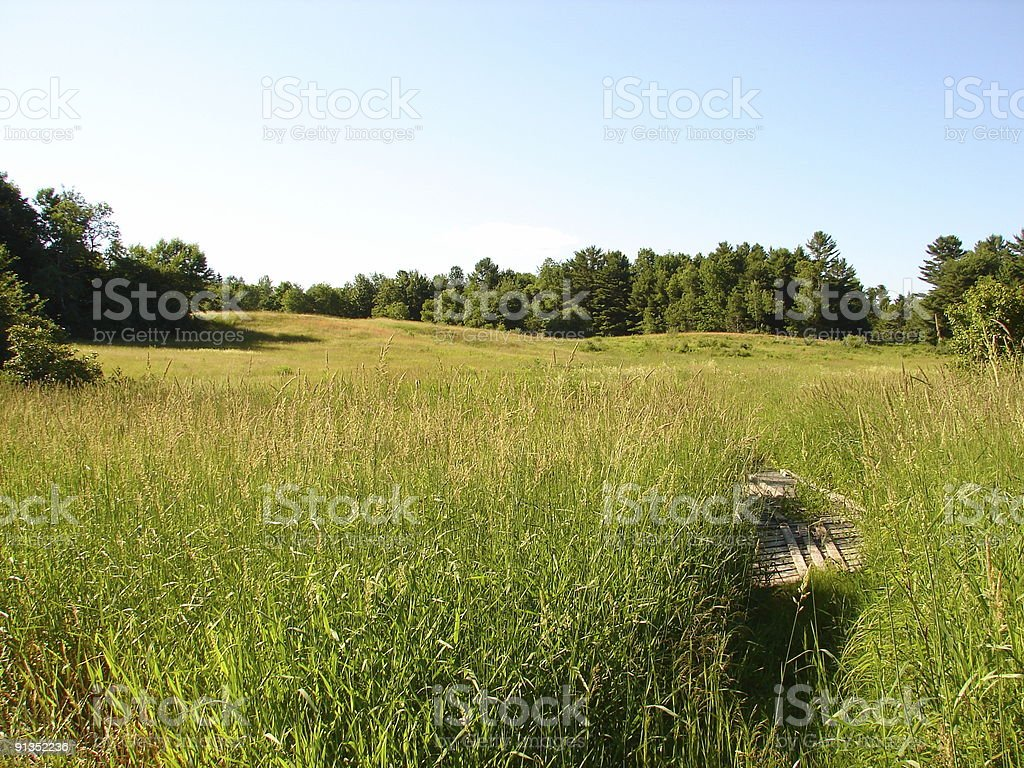 Black Brook Meadow stock photo