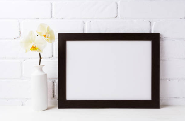 Black brown  landscape frame mockup with soft yellow orchid in vase stock photo