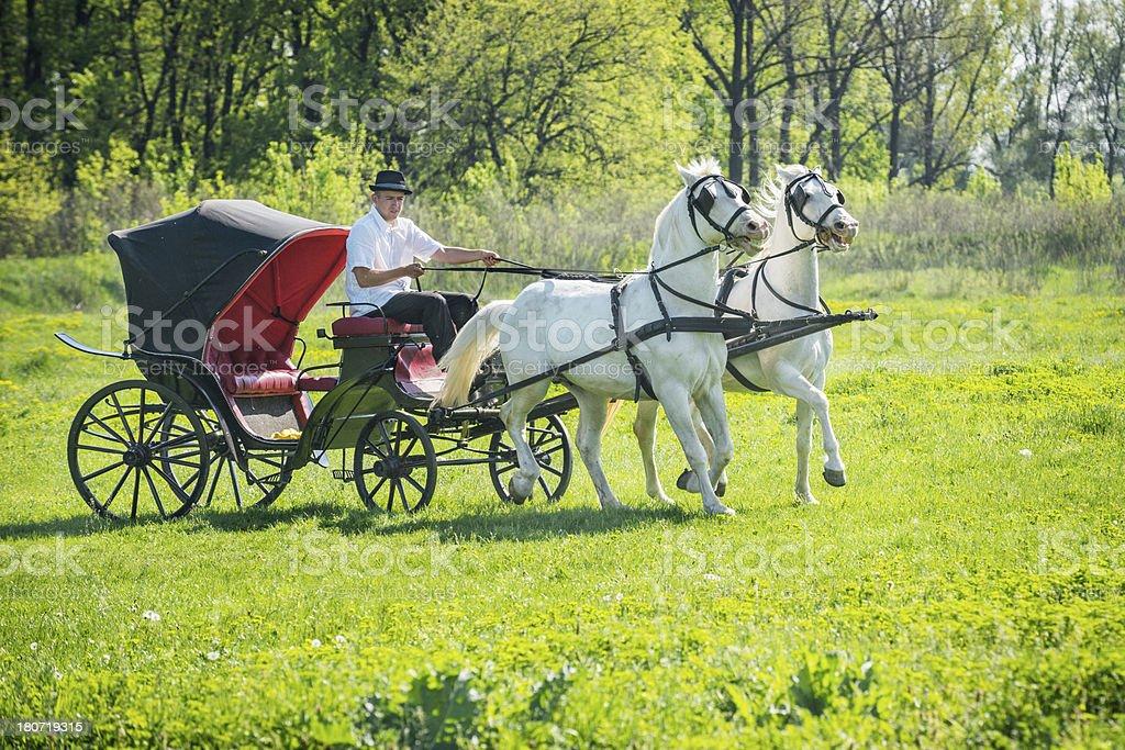 Black carriage royalty-free stock photo
