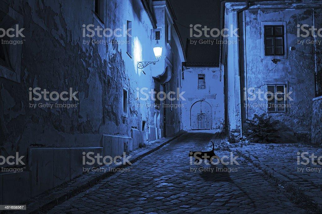 black cat crosses the deserted street at night stock photo