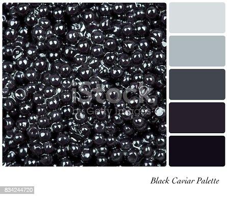 istock Black Caviar Palette 834244720