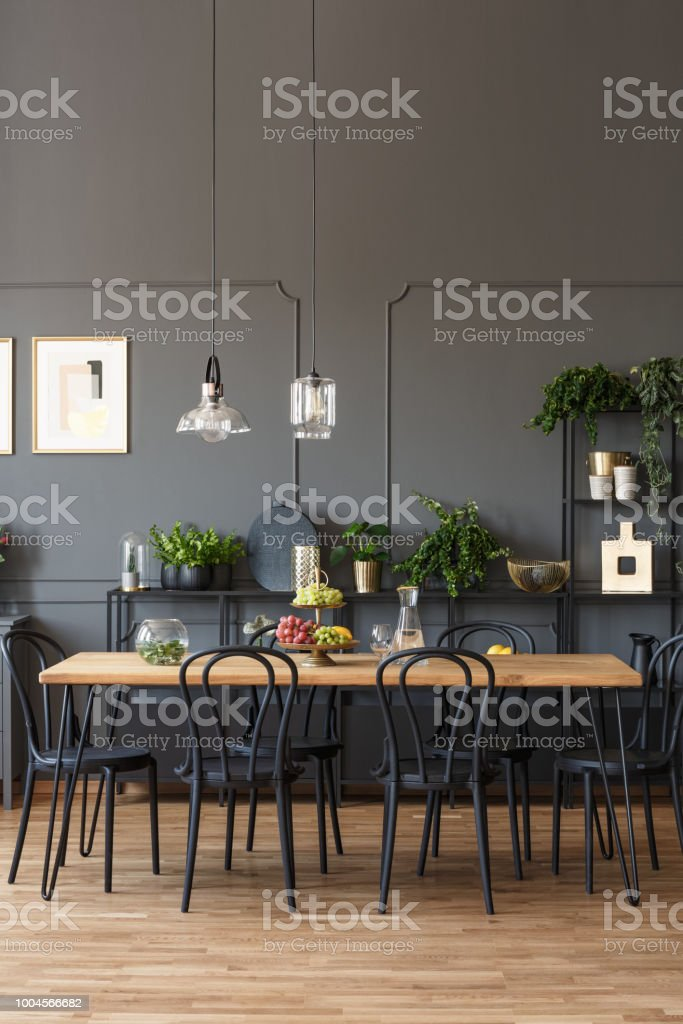 Black chairs at wooden table in grey dining room interior with lamps and plants. Real photo stock photo