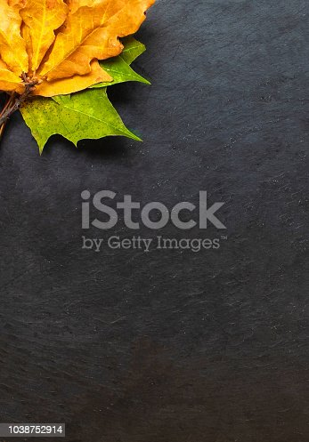 istock Black chalkboard with autumn yelllow leaves. Copyspace.  Flat lay. Back to school concept.