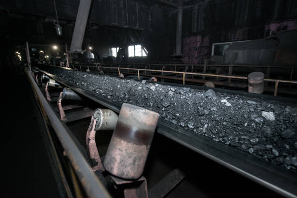 Black coal on a conveyor belt. The production process in the Thermal Power Plant. stock photo