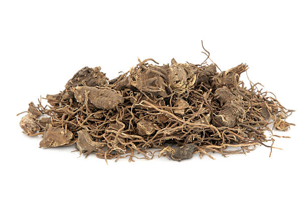 Black Cohosh Root Herb Black cohosh root herb used in natural alternative herbal medicine over white background. Used to treat menopausal and pre menstrual symptoms in women. Actaea racemosa. corn lilly stock pictures, royalty-free photos & images