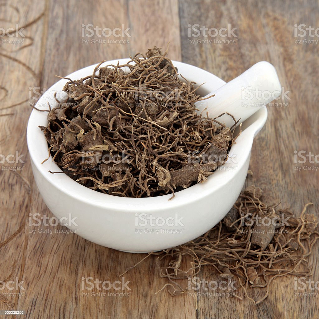 Black Cohosh Root Herb stock photo