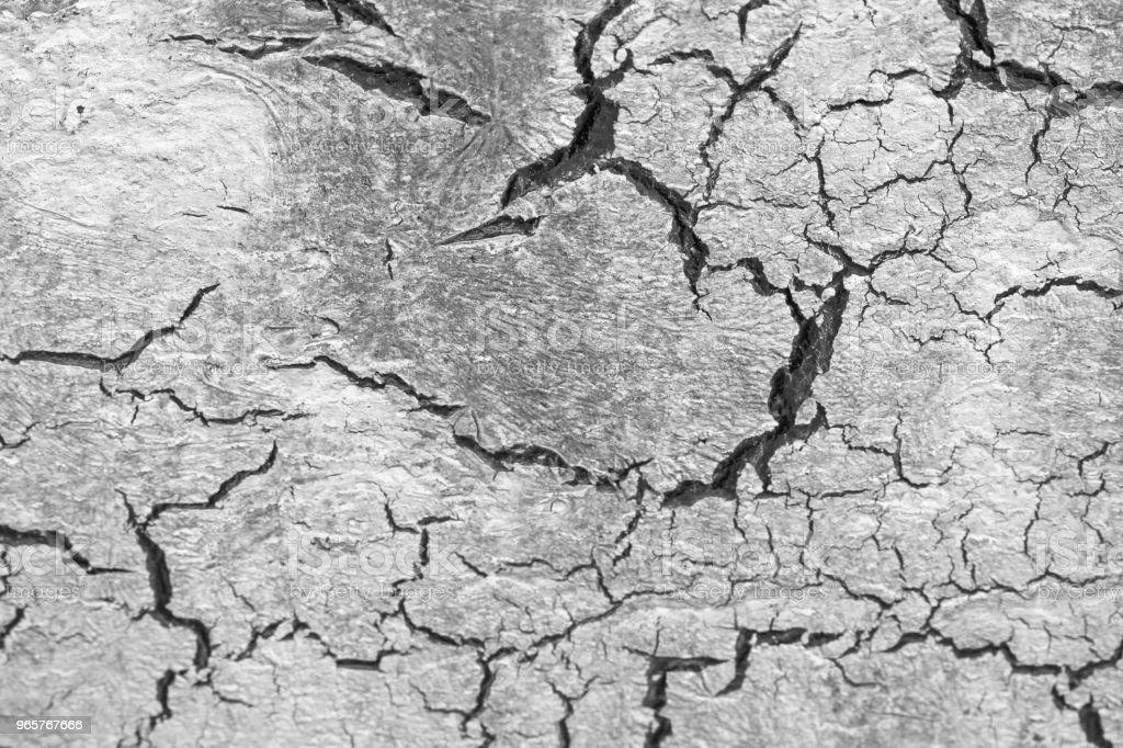 Zwarte scheuren op witte en grijze achtergrond. Grijze en witte achtergrond. Dorre aarde. Droge gebarsten aarde achtergrond. Bodem In Cracks.Creviced textuur. Droogte Land. Milieu droogte - Royalty-free Abstract Stockfoto