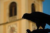 black crow figure silhouette in Ljubljana