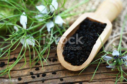 Black cumin (nigella sativa or kalonji) seeds in spoon on plants background