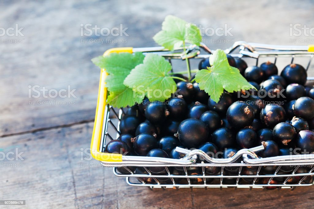 Black currant berries shop basket wooden table background, selective focus stock photo