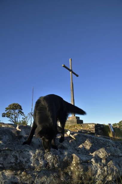 Cão preto e cruz no céu azul em Brasil - foto de acervo