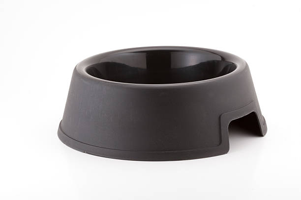 black dog bowl. - hundenapf stock-fotos und bilder