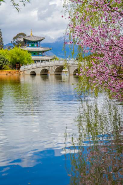 black dragon pool. es gibt einen berühmten teich in der malerischen jade frühling park (yu quan) in der provinz yunnan, china. - teichfiguren stock-fotos und bilder