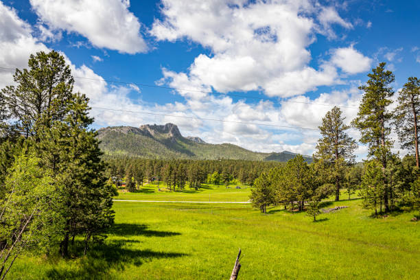 Black Elk Peak stock photo