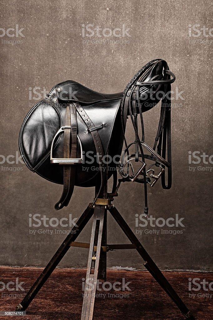black english saddle stock photo