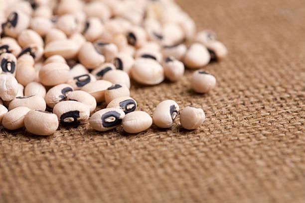 Black eyed peas stock photo