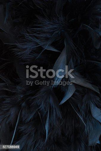 istock black feathers 527088949