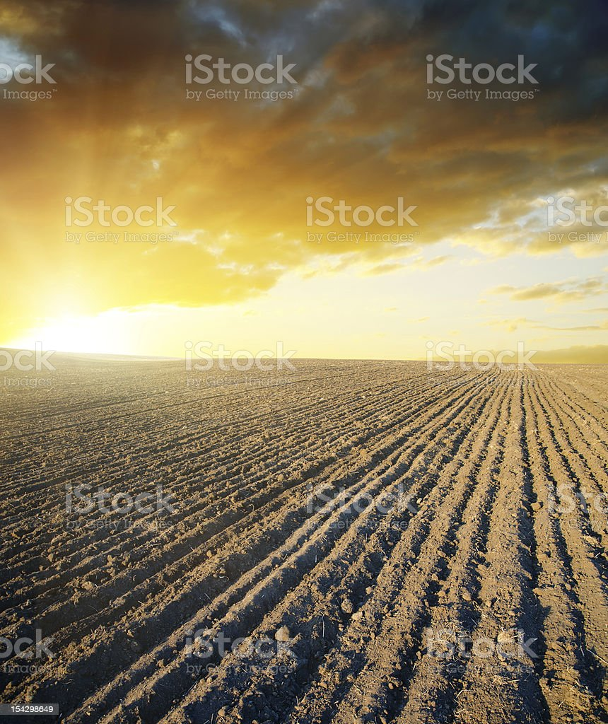 black field and sunset royalty-free stock photo