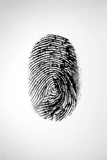 black fingerprint - deductive stock pictures, royalty-free photos & images