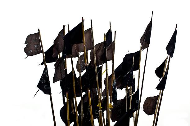 Black flags, isoliert – Foto