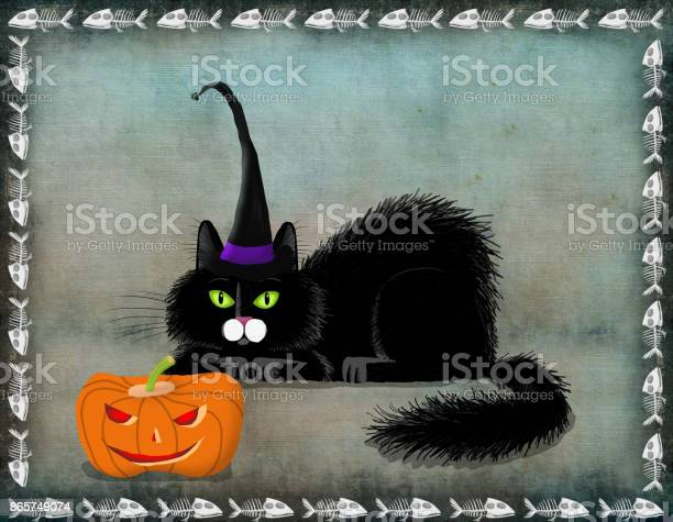 Black fluffy cat lying next to jack o lantern picture id865749074?b=1&k=6&m=865749074&s=612x612&h=9ajk4ldrbjklcov25uh3 nx wnjyt1ej0bwqtrcm410=