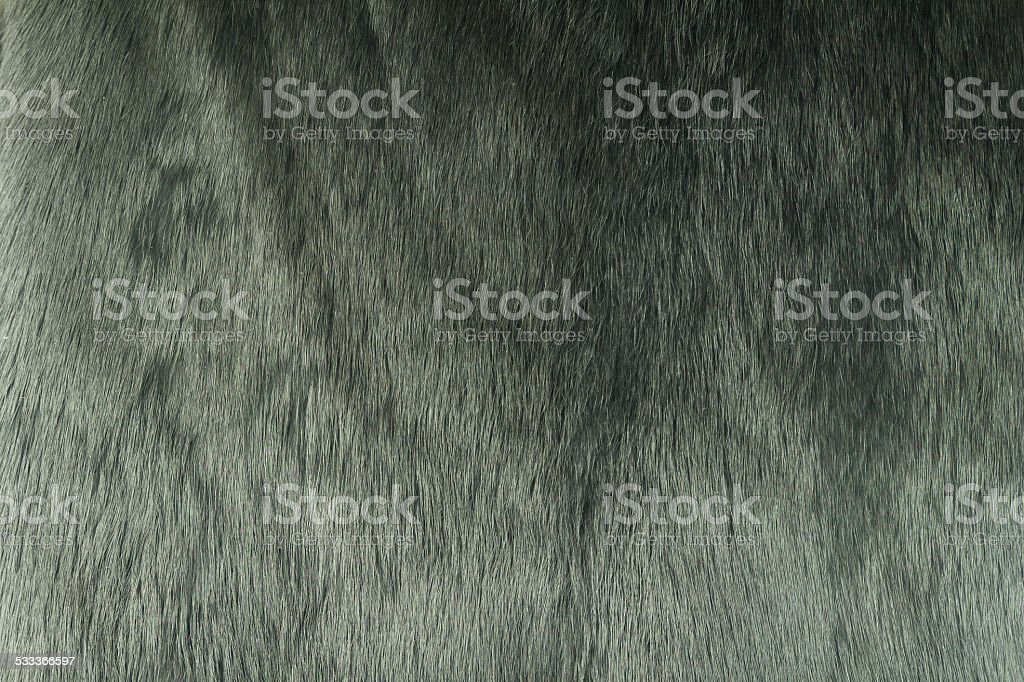 Black fluffy rabbit fur. stock photo