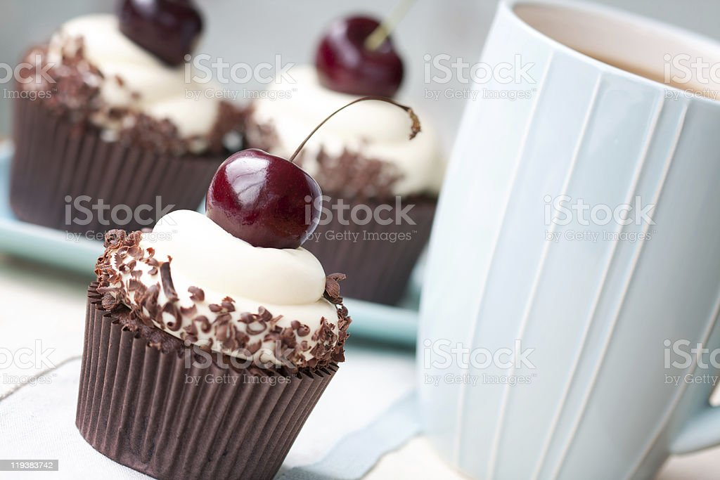 Black forest cupcakes stock photo