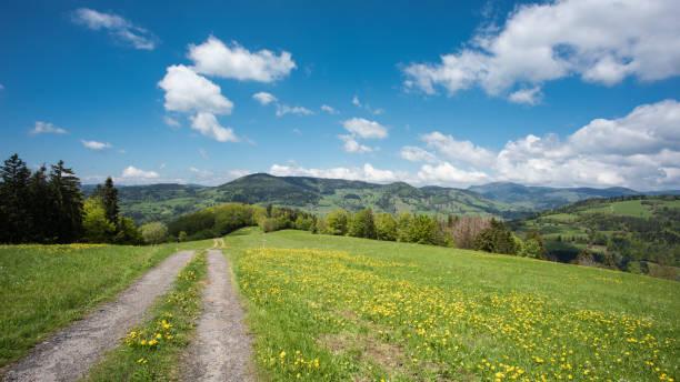 Schwarzwalddeutschland – Foto