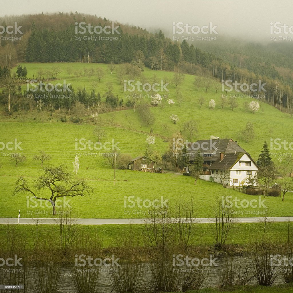 Black Forest Germany royalty-free stock photo