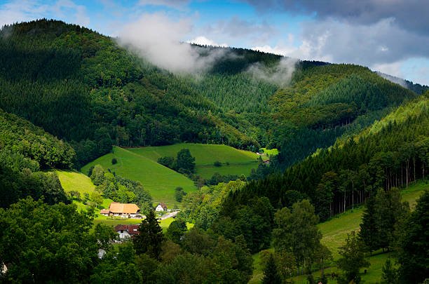 Black Forest Germany stock photo