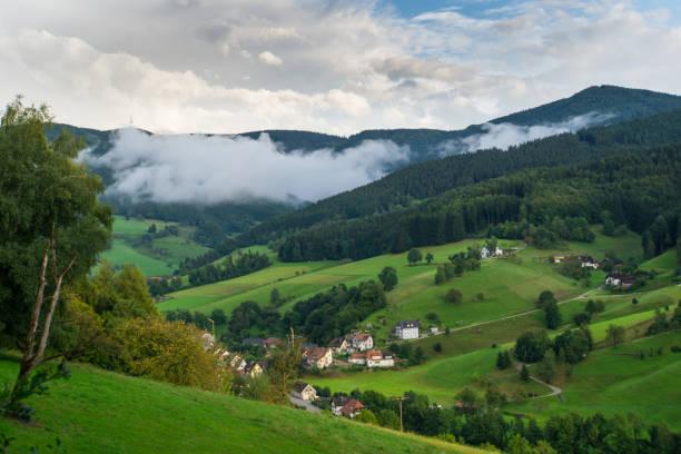schwarzwald-deutschland mit kleinen dorf von oben in der morgendämmerung mit nebel - sommerferien baden württemberg stock-fotos und bilder