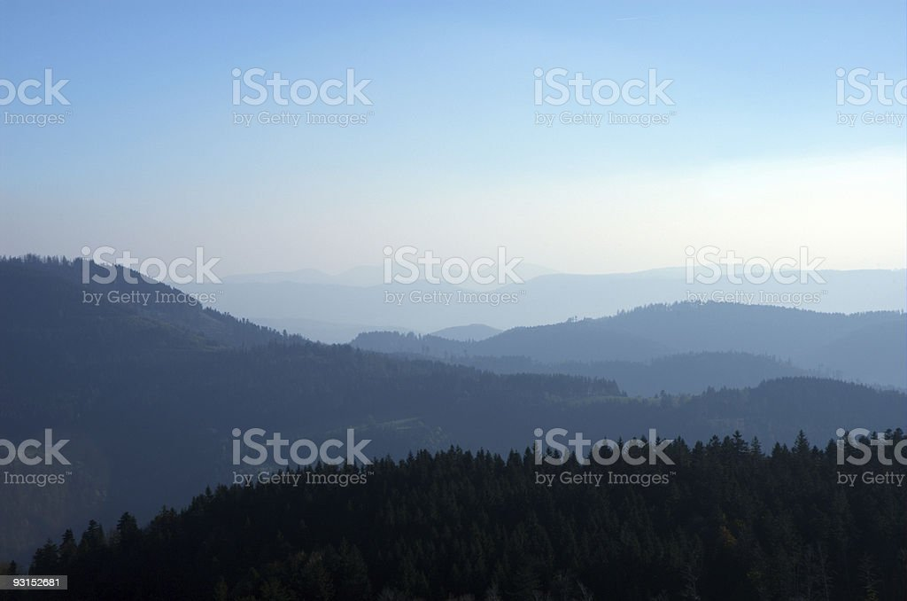 Black Forest in Blue royalty-free stock photo