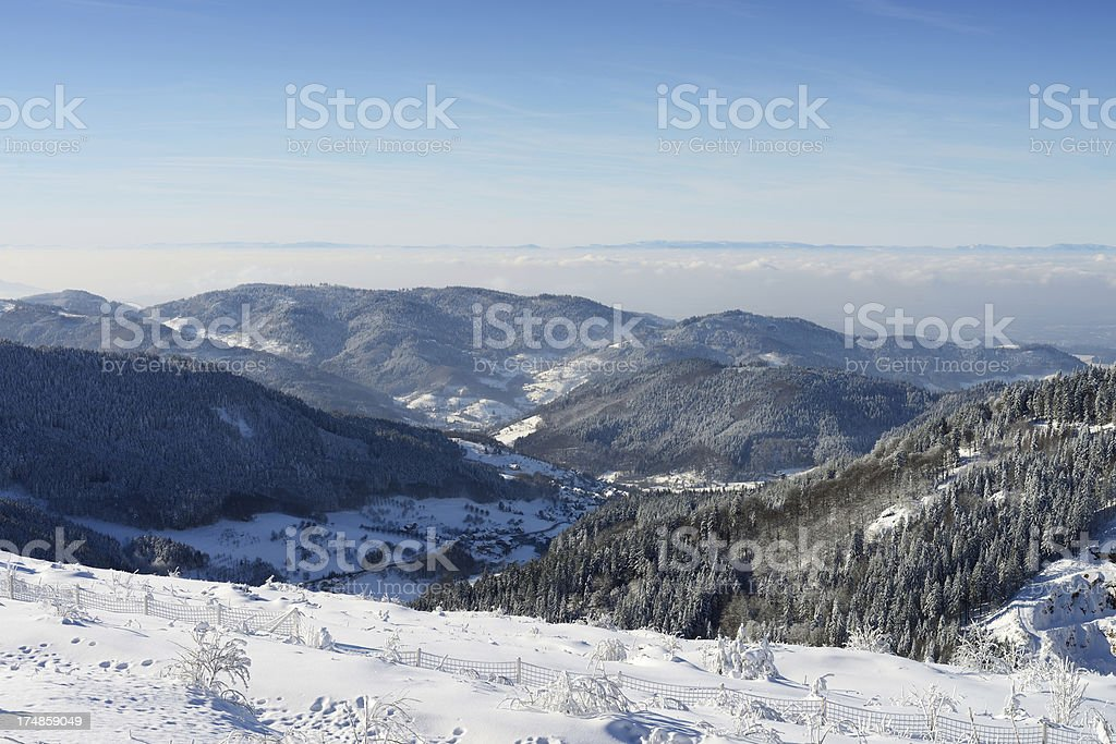 Black Forest in Winter Winter Themes Black Forest Stock Photo