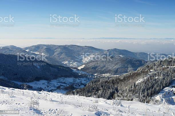 Black Forest In Winter Stock Photo - Download Image Now
