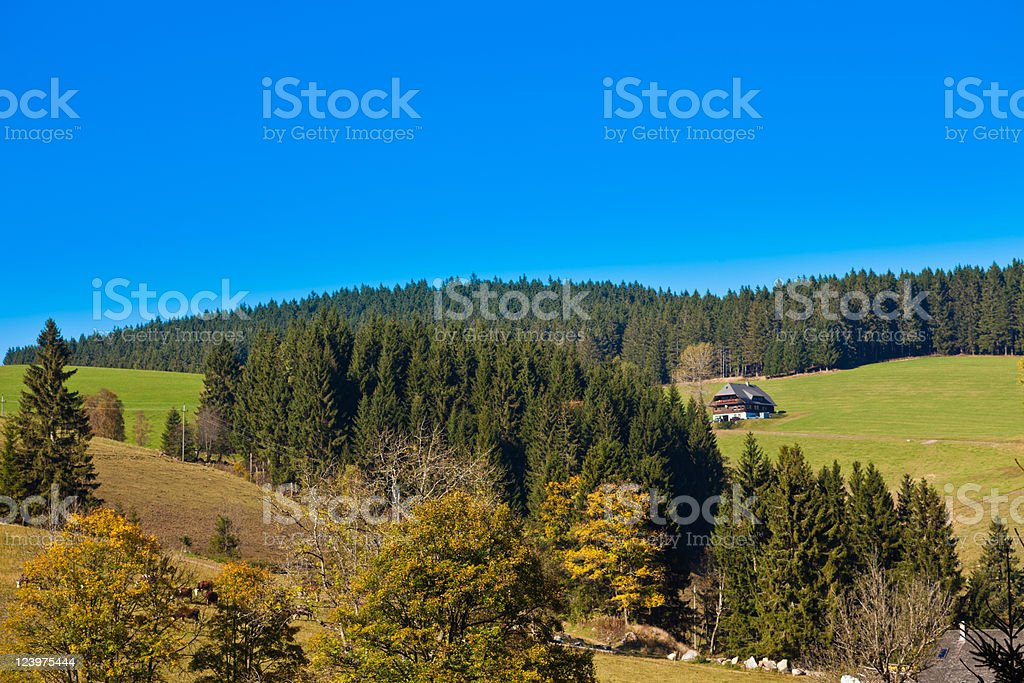 Black Forest Landscape royalty-free stock photo