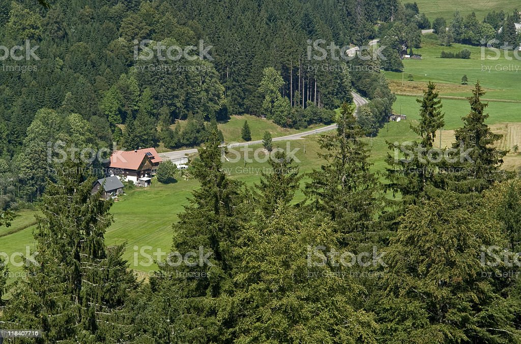 Black Forest scenery at summer time royalty-free stock photo