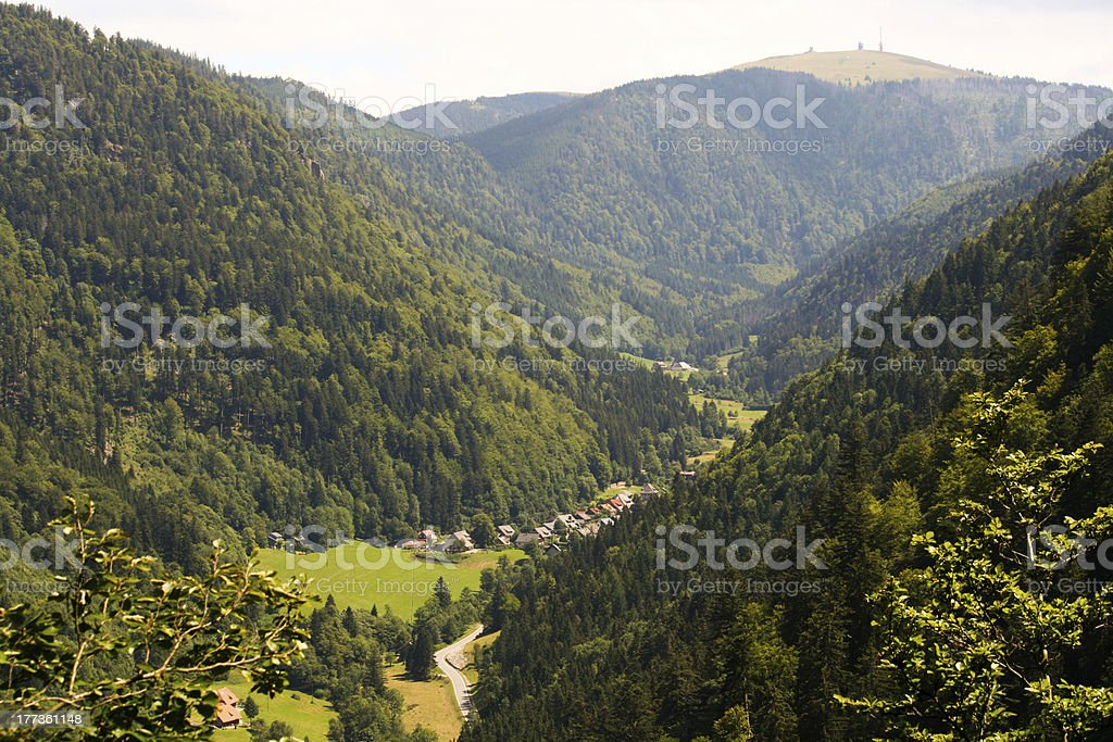 Black forest valley stock photo