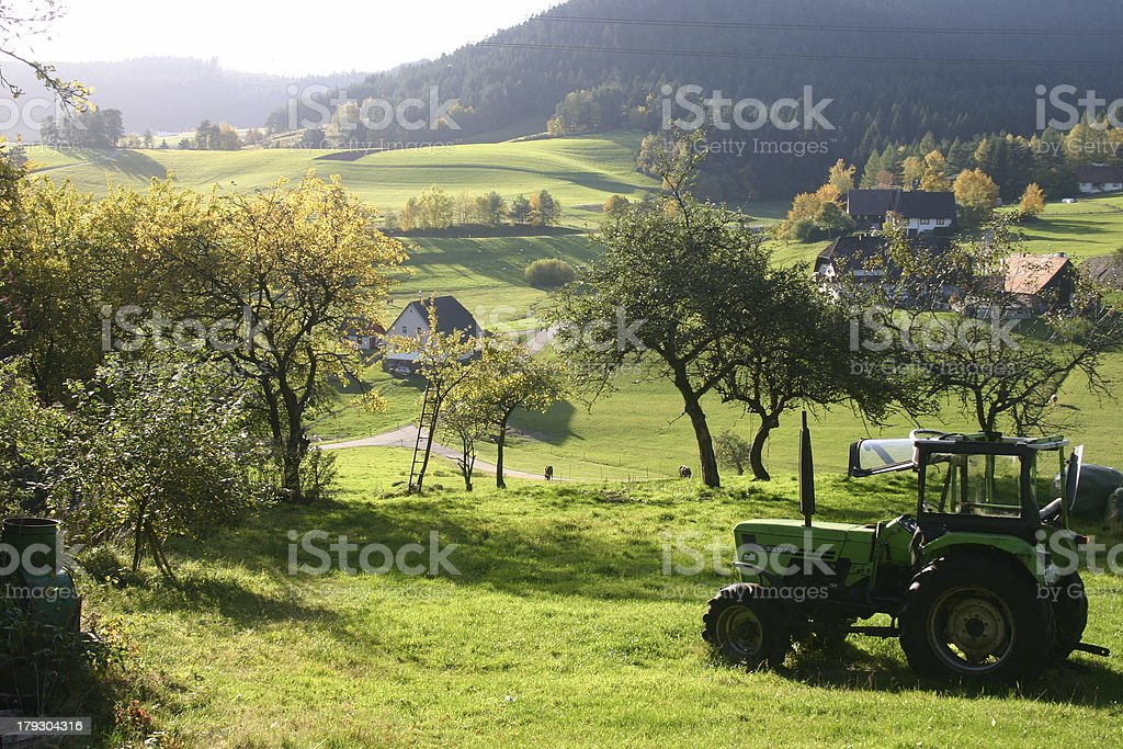Black forest view with tractor stock photo