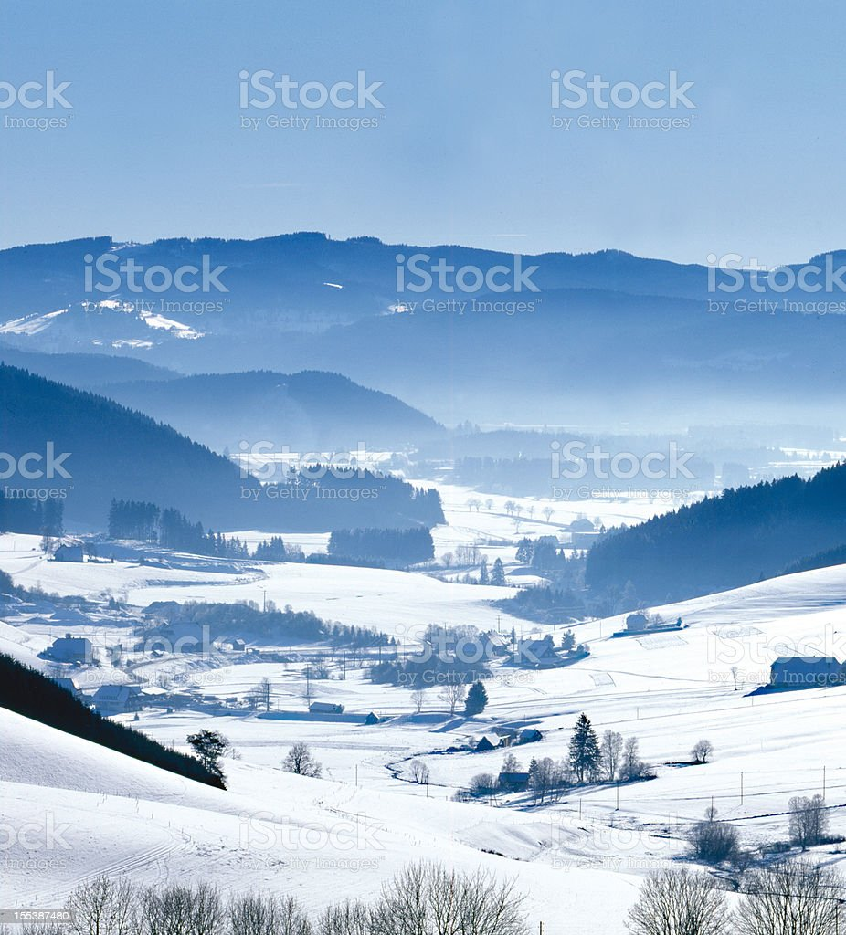 Black forest winter impression royalty-free stock photo