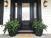 front door with plants