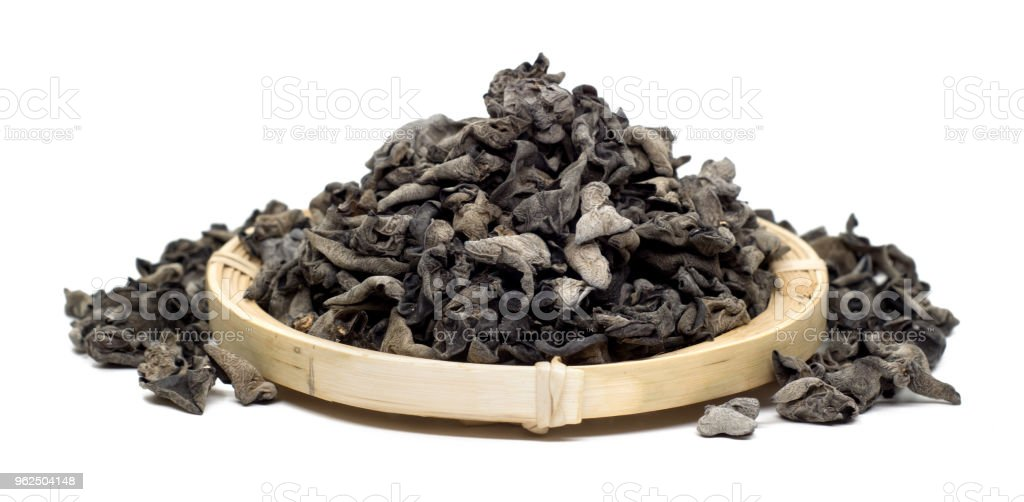 black fungus on white background - Royalty-free Bamboo - Material Stock Photo