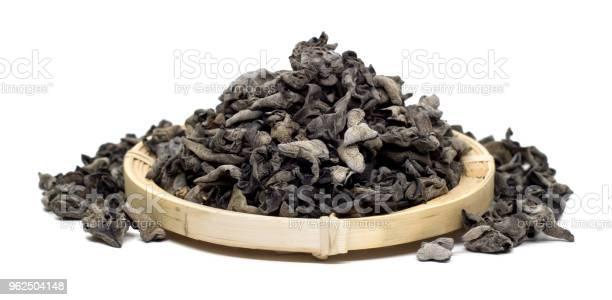 Foto de Cogumelo Negro Sobre Fundo Branco e mais fotos de stock de Alimentação Saudável