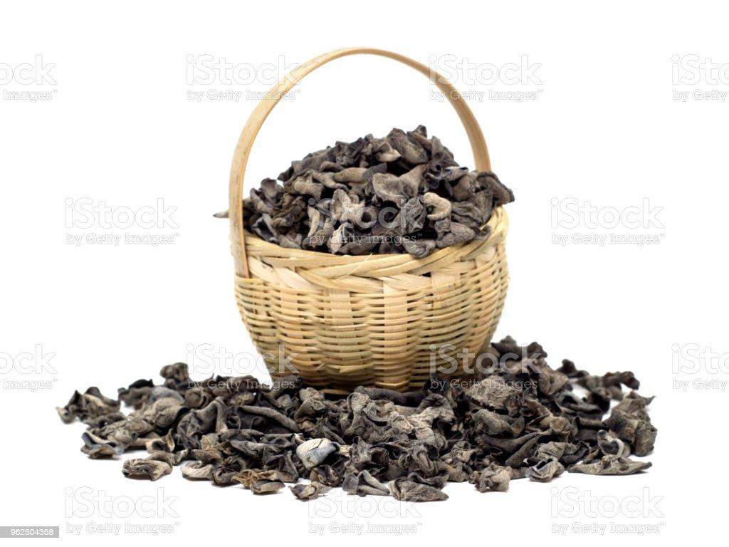 Cogumelo Negro sobre fundo branco - Foto de stock de Alimentação Saudável royalty-free