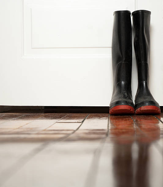 black galoshes in front of white door - kellyjhall stock pictures, royalty-free photos & images