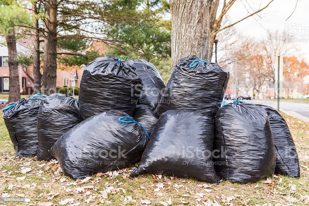 Black garbage bags filled wih leaves outside stock photo