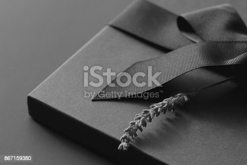 istock Black gift box on a dark contrasted background, decorated with a textured bow and feathers, creating a romantic atmosphere. Typically used for birthday, anniversary presents, gift cards, post cards, letters. 867159380