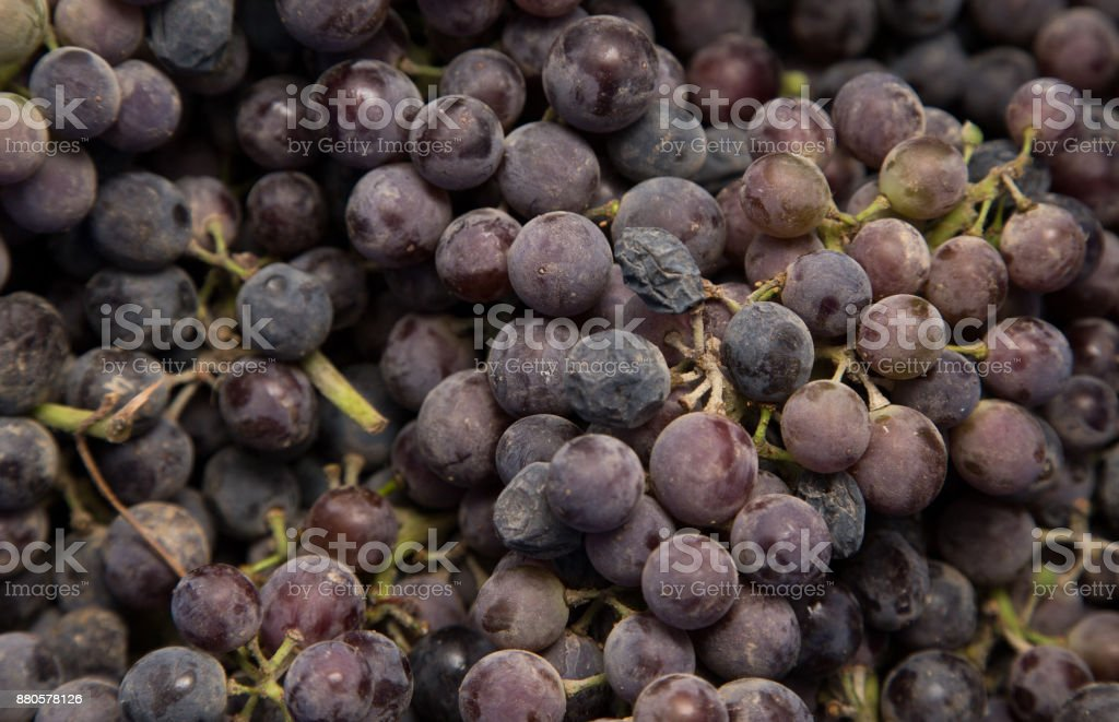 black grapes as background stock photo